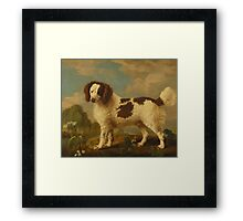 George Stubbs - Brown and White Norfolk or Water Spaniel 1778 Framed Print
