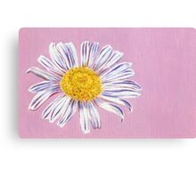 daisy in the morning Canvas Print