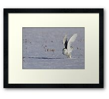 On the count of 3, 2, 1.... Framed Print