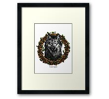 Canis Lupus - Gray Wolf Framed Print