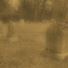 "'""THE CEMETERY, a Series', No. 7, Three Little Lambs at Dusk""... prints and products by © Bob Hall"