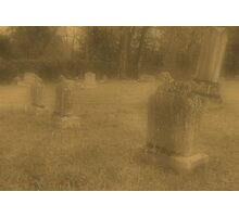 "'""THE CEMETERY, a Series', No. 7, Three Little Lambs at Dusk""... prints and products Photographic Print"