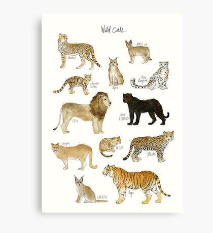 Wild Cats Canvas Print