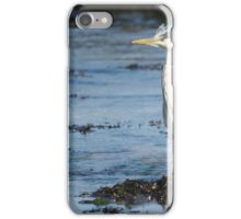 Scruffy Heron iPhone Case/Skin