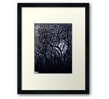 Moonlit Trees  Framed Print