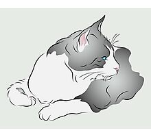 Grey and White Cat Illustration in Profile Photographic Print