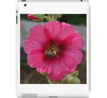 Collection Point Bee iPad Case/Skin