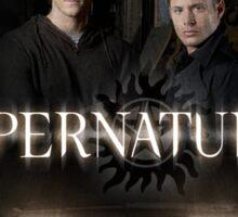 Supernatural 8 Sticker
