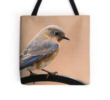 Eastern Bluebird Tote Bag