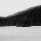 The Lost Lake by annabe11e5