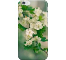 When trees are in bloom (2) iPhone Case/Skin