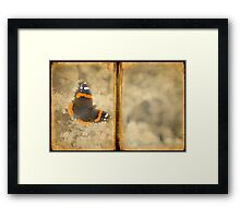 Red Admiral with Book Texture Framed Print