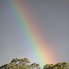 My Rainbow by kalaryder
