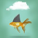 Under a Cloud, shark fin goldfish by Vin  Zzep