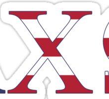 axo america letters Sticker