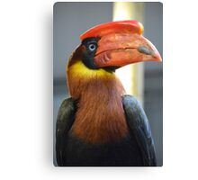 Bright Coloured Toucan Canvas Print