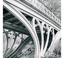 Gothic Bridge Photographic Print