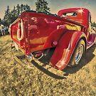 Run Red by Steve Walser
