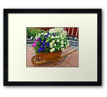 Display of Petunias Framed Print