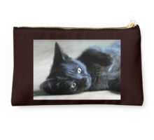 Fast Moving, Feisty Furball - Meet Haggis! Studio Pouch