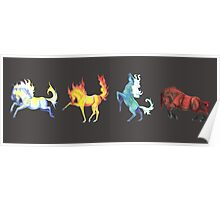 Four Horse Elements Poster
