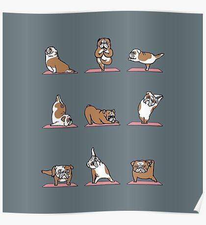 English Bulldog yoga Poster