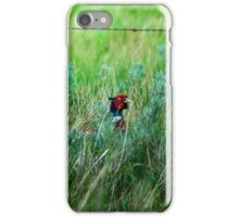 Male Pheasant iPhone Case/Skin