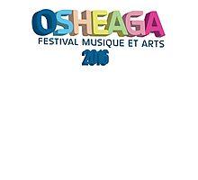 Osheaga 2016 Photographic Print