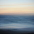 moving beach by wellman
