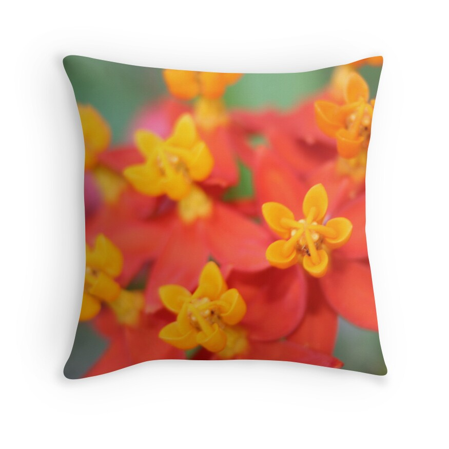 Red And Yellow Decorative Pillows :