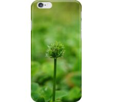 Starting to bloom iPhone Case/Skin