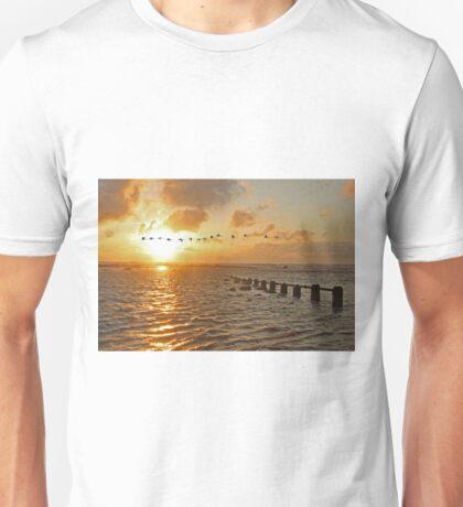 Whooper Swans Unisex T-Shirt