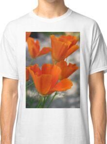 California Poppy on Vancouver Island BC Canada Classic T-Shirt