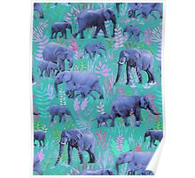 Sweet Elephants in Bright Teal, Pink and Purple Poster