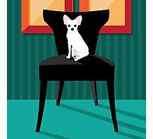 Flat design white Chihuahua on her chair. Photographic Print
