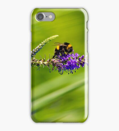 Bumble bee on a flower iPhone Case/Skin