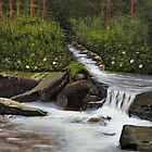 """""""Streams of Living Water""""... prints and products by © Bob Hall"""