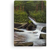 """Streams of Living Water""... prints and products Canvas Print"