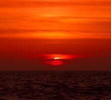 A Florida Sunset Sticker