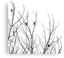 Artistic Bright Birds on Tree Branches Canvas Print