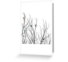 Artistic Bright Birds on Tree Branches Greeting Card