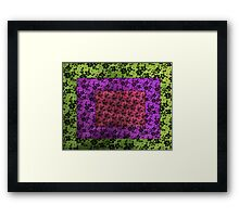 Lace Combo Framed Print