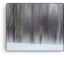 The Whisper of Winter Wood Canvas Print