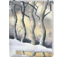 Frozen Forest iPad Case/Skin