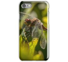 Dragon Fly Eyes iPhone Case/Skin