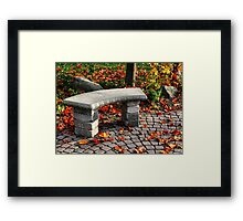 The Stone Bench Framed Print