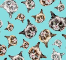 Cats in Turquoise Blue Sticker