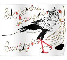 Secretarybird, Sagittarius serpentarius  Poster