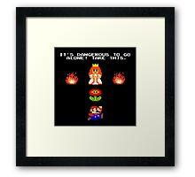 Zelda Bros Framed Print