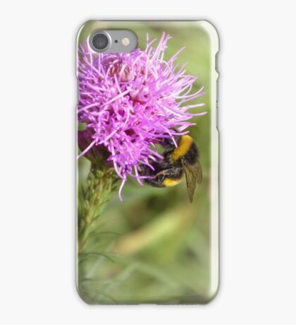 Summer time bumble-bee iPhone Case/Skin